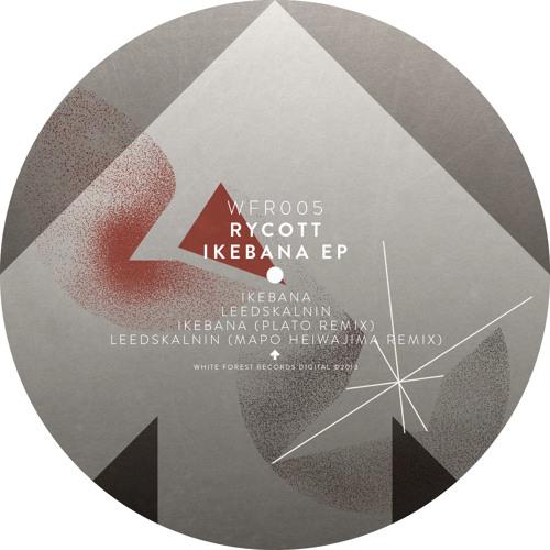 Rycott - Leedskalnin (original mix)