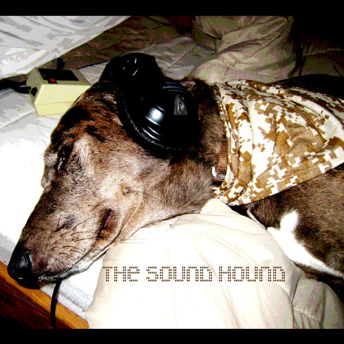 The Sound Hound (Part I) {Free high quality download}