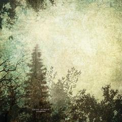 David Lacroix - Forgotten (Sefly remix) // L3D Recordings