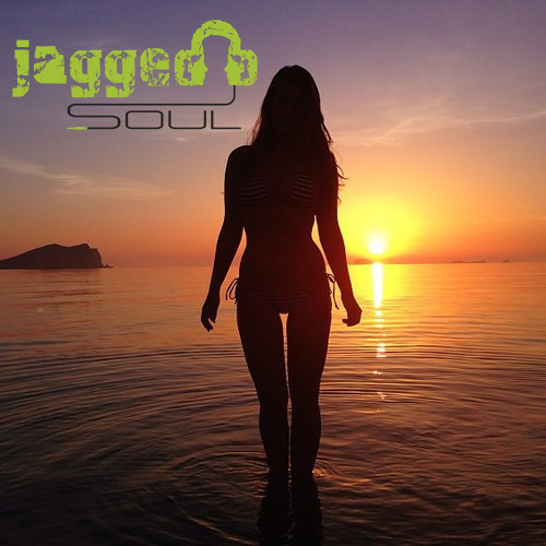 JAGGED SOUL -PLEASURE MIX- 23.5.13