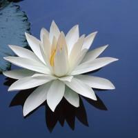 Meditazione SO-HUM