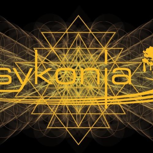 Psykonia 2013