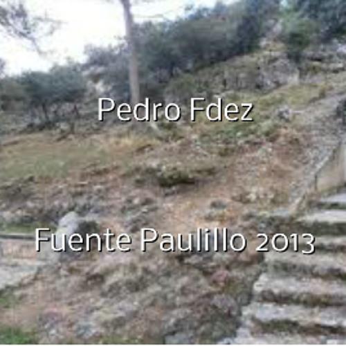 Pedro Fdez-FUENTE PAULILLO 2013