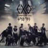 EXO - Wolf (Teaser)