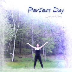 LunarVox - Perfect Day