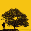 'Better Together' Jack Johnson Cover :)