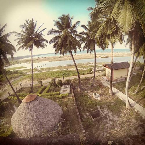 Andaman_Outside My Window 2