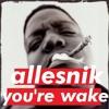 Allesnik - You're Wake mp3