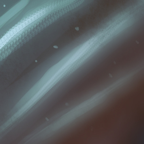 Mote Flow -isOceans (Teaser)