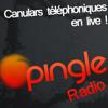 Marc demande René... René la taupe, en live ! - Pingle Radio Tests