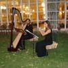 Momento musical n°12(arpa y flauta)