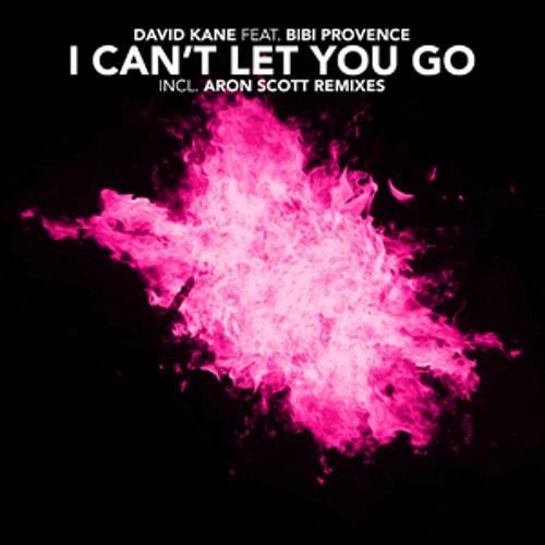 David Kane feat. Bibi Provence - I can't let you go (Radio edit)