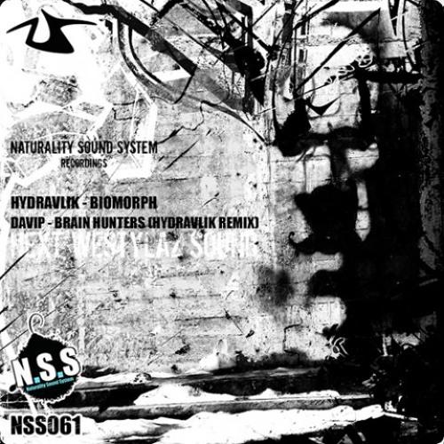 DaVIP - Brain Hunters (Hydravlik Remix) [NSS061]