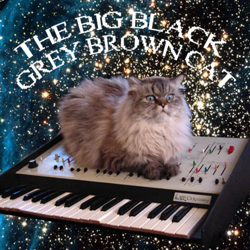 The Big Black Grey Brown Cat (BBGBC)