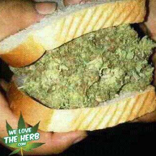 Dred Sandwich