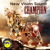 New Reggae & Culture Mix 2013 - New Vision Sound - Champion