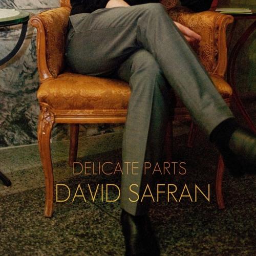 David Safran – Delicate Parts