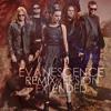 Evanescence - Going Under (Alternative Version)