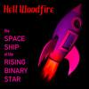 Binary Star Space Ship
