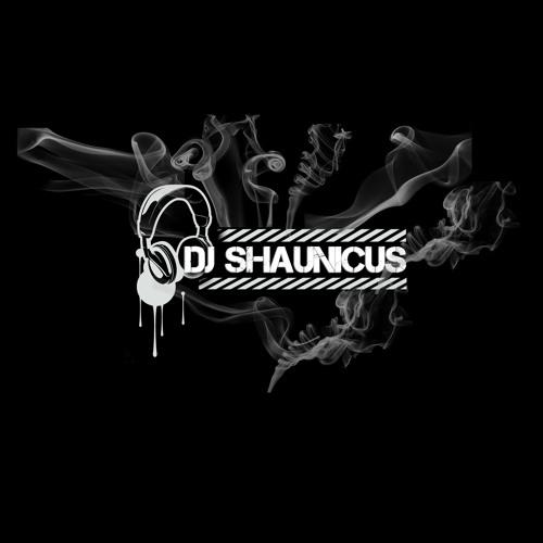2013 mix Shaunicus