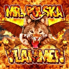 Mr. Polska - Vlammen (Totally Summer Anthem) (prod. Boaz v/d Beatz)