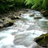 「川の流れのように」カラオケ
