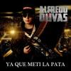 (Con Banda) Alfredito Olivas - Ya Que Meti La Pata