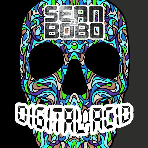 Sean&Bobo - Digital acid (Original mix)