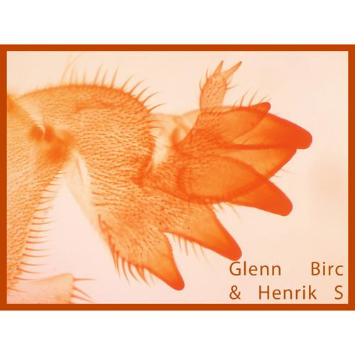 Glenn Birc & Henrik S - Frisk Slapp Ting