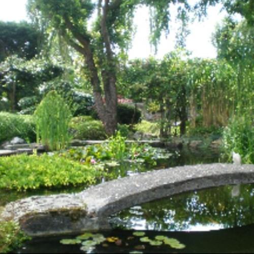Jade Lately - Zen Garden (Prod. By Dan Oddysee)