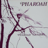 Harvest Time - Pharoah Sanders