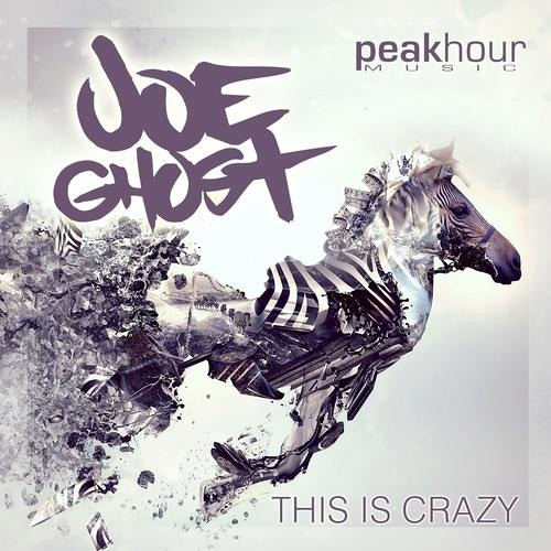 Joe Ghost - This Is Crazy [OUT NOW!]