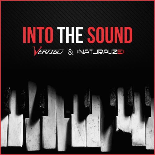 Vertigo & Naturalize - Into the sound (Demo) [Out Now with Blue Tunes]