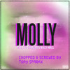 Tyga ft Wiz Khalifa - Molly (Chopped & Screwed)