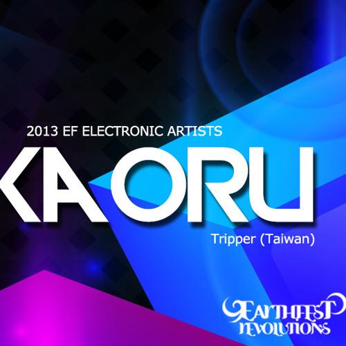 Earthfest 2013 地球革命戶外電子音樂祭