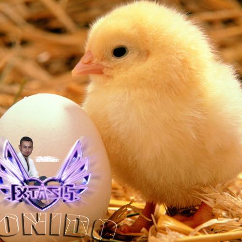 Descargar Brindis La Mafia Bronco Mix Mp3 Gratis