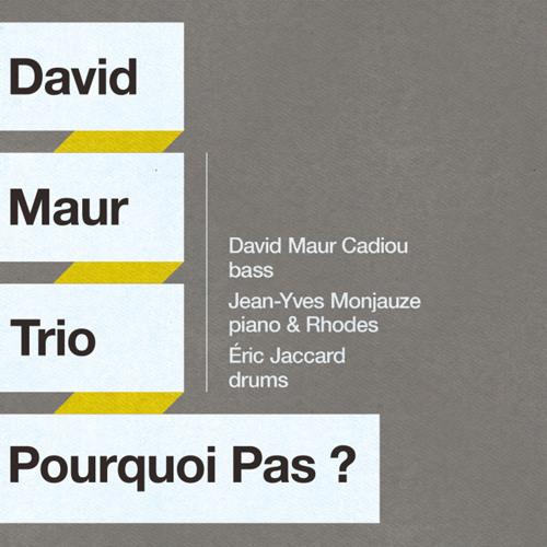 DAVID MAUR TRIO - Automne
