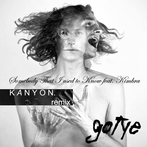 Somebody That I Used to Know - Gotye feat. Kimbra (Kanyon. rmx)