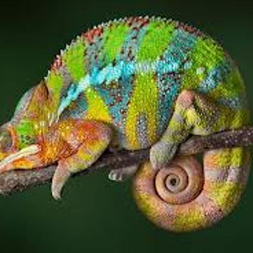 Spectrum - Reptile