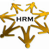 A Competitive Edge (Human Resources)