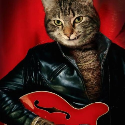 WEEK.5_Olhos.De.Gato(head&improv)TAKE#1