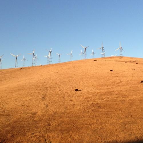 Windmills  at Windmill Alley