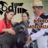 Burro motorizado_dj dancer