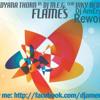 Dyana Thorn vs Dj M.E.G. feat Viky Red - Flames (Dj AmEryKaNu Reworked Version)