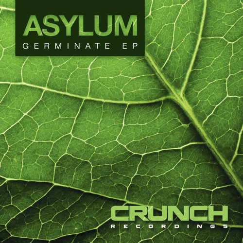 Asylum - Embryo