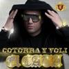 El Cata - Cotorra Y Voli (feat. Pitbull) mp3