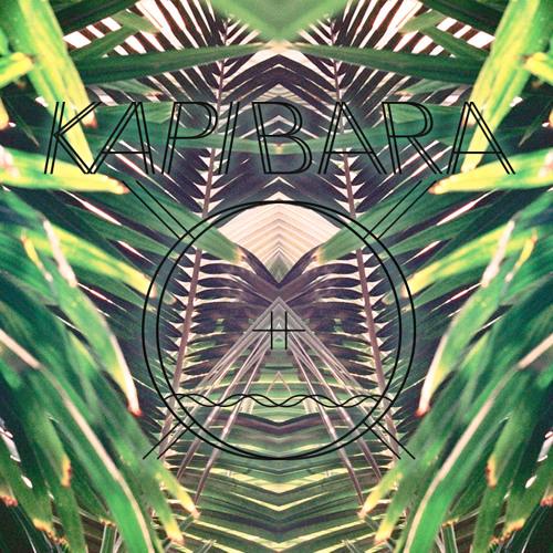 Kapibara - Luminous Podcast
