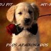 DJ PIT celin dion - my heart will go on (titanic)