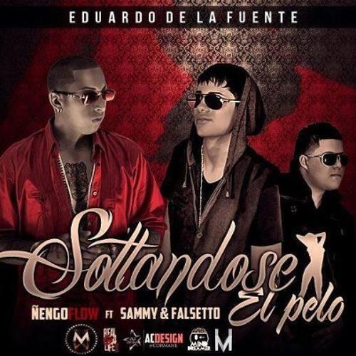 144 - SOLTANDOSE EL PELO - FALSETTO Y SAMMY FT ÑENGO FLOW  - ][DJ MATU RMX][ - (REGGAETON MIX)