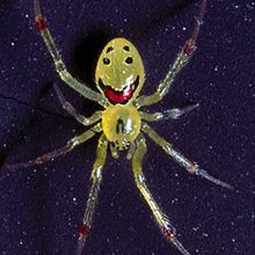 - Oh no its the Patagonians By the Cheeky Spiders